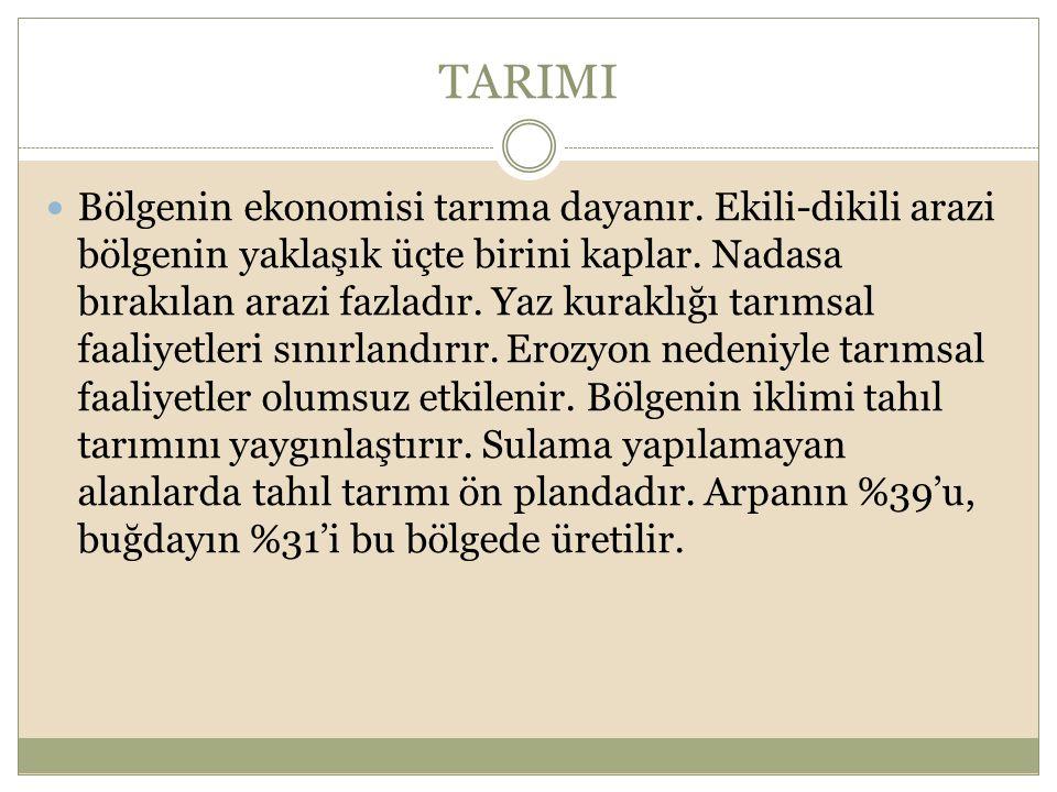 TARIMI