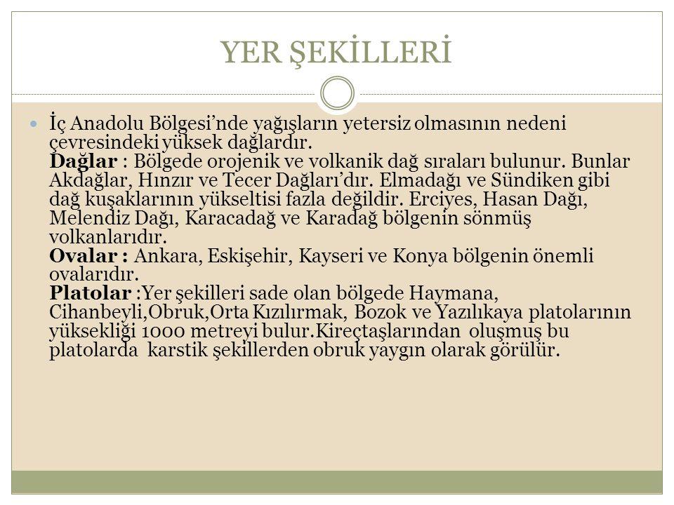 YER ŞEKİLLERİ