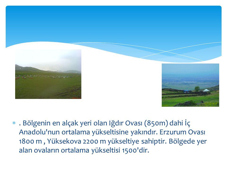 Bölgenin en alçak yeri olan Iğdır Ovası (850m) dahi İç Anadolu nun ortalama yükseltisine yakındır.