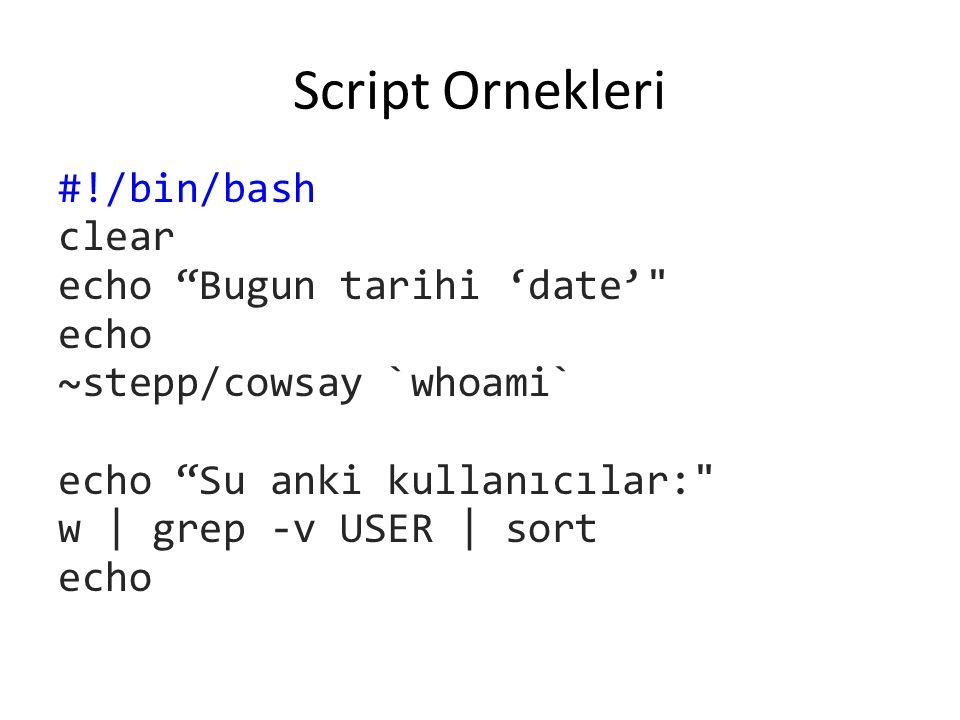Script Ornekleri #!/bin/bash clear echo Bugun tarihi 'date' echo