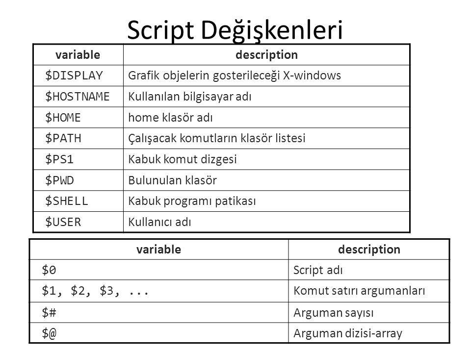 Script Değişkenleri variable description $DISPLAY