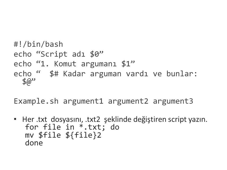 #!/bin/bash echo Script adı $0 echo 1. Komut argumanı $1 echo $# Kadar arguman vardı ve bunlar: $@