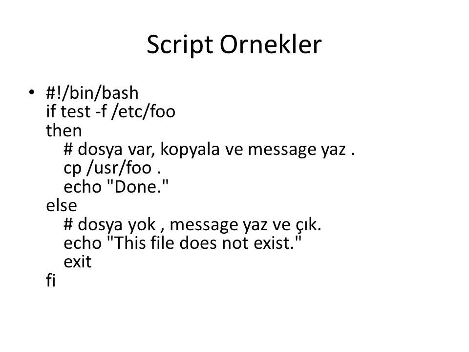 Script Ornekler