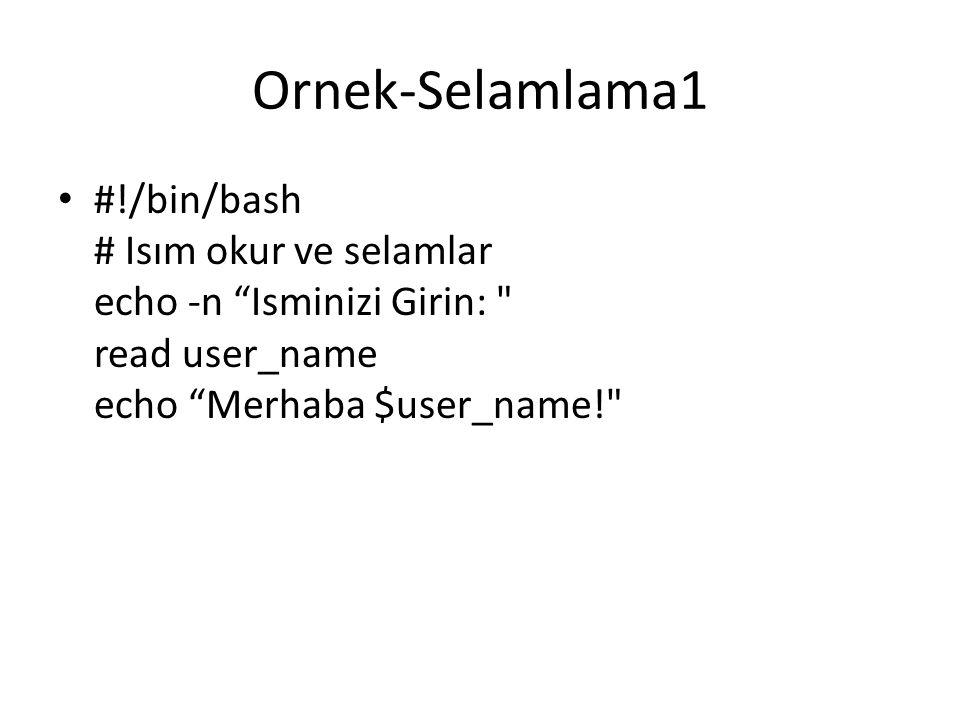 Ornek-Selamlama1 #!/bin/bash # Isım okur ve selamlar echo -n Isminizi Girin: read user_name echo Merhaba $user_name!