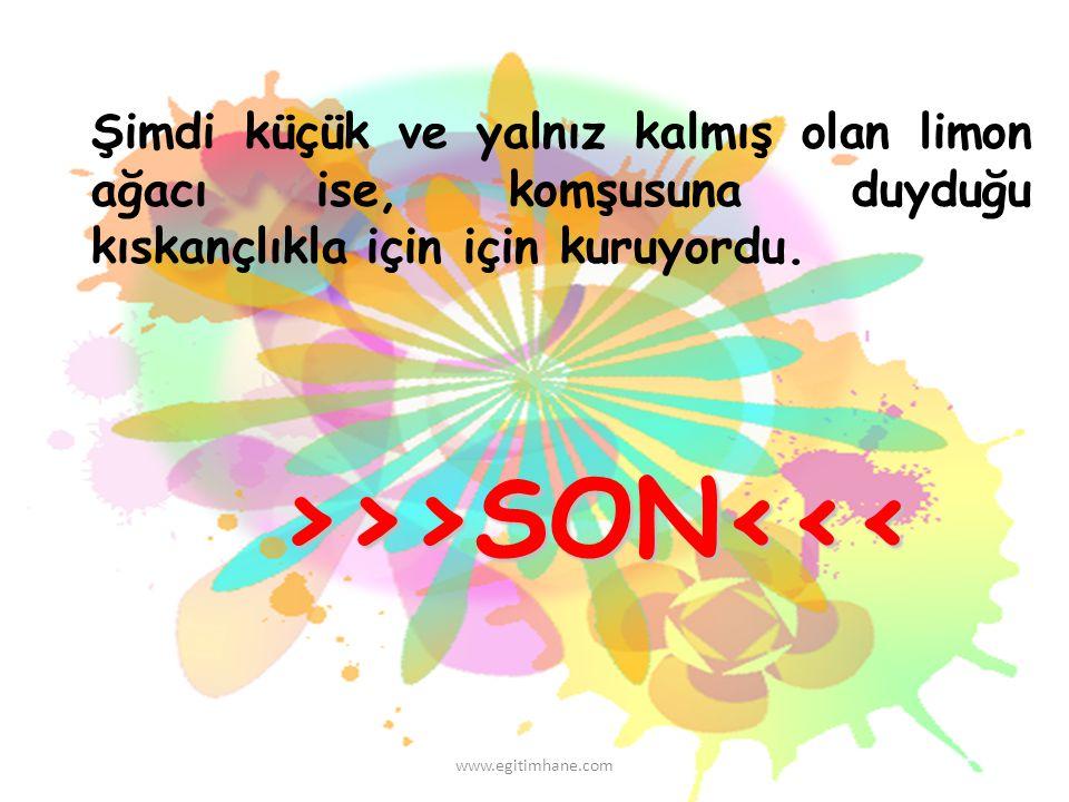 >>>SON<<<