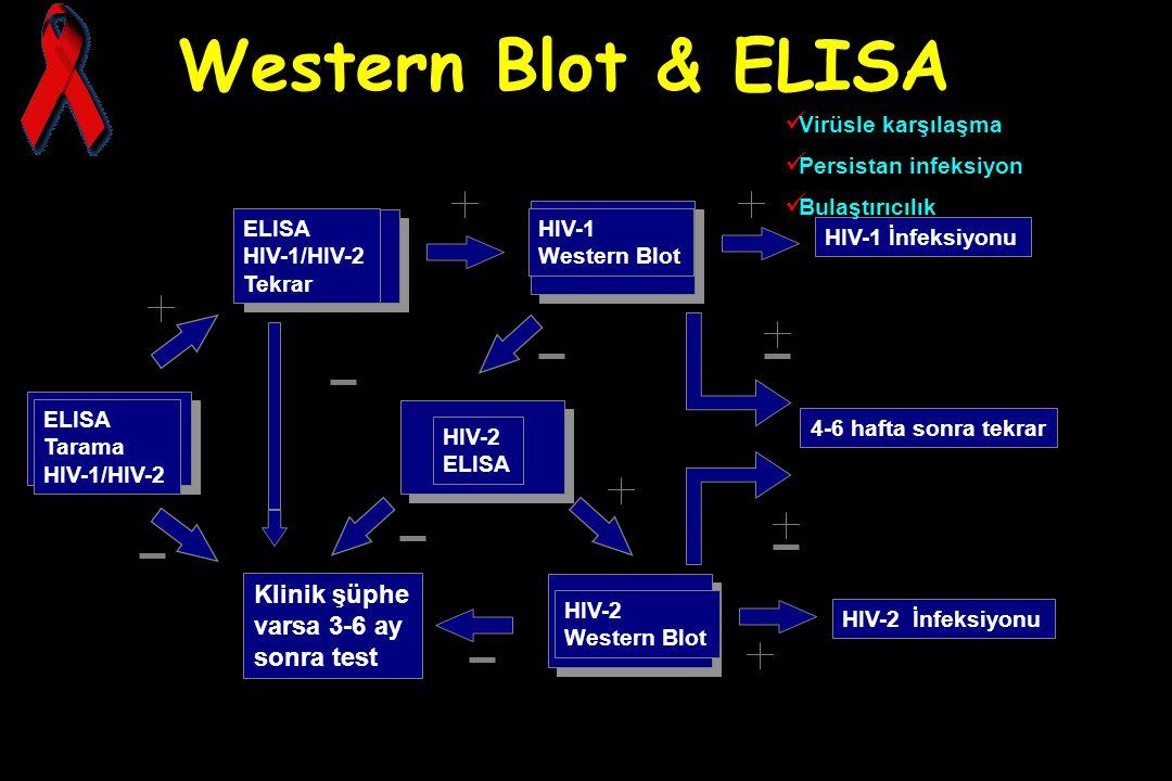 Western Blot & ELISA Klinik şüphe varsa 3-6 ay sonra test