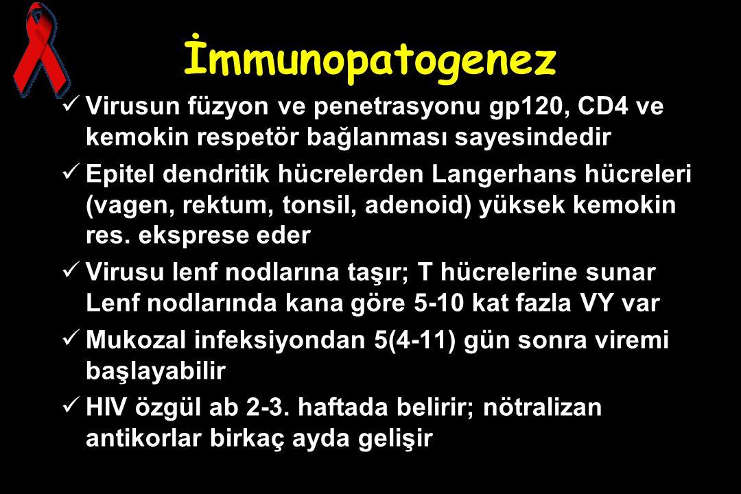 İmmunopatogenez Virusun füzyon ve penetrasyonu gp120, CD4 ve kemokin respetör bağlanması sayesindedir.