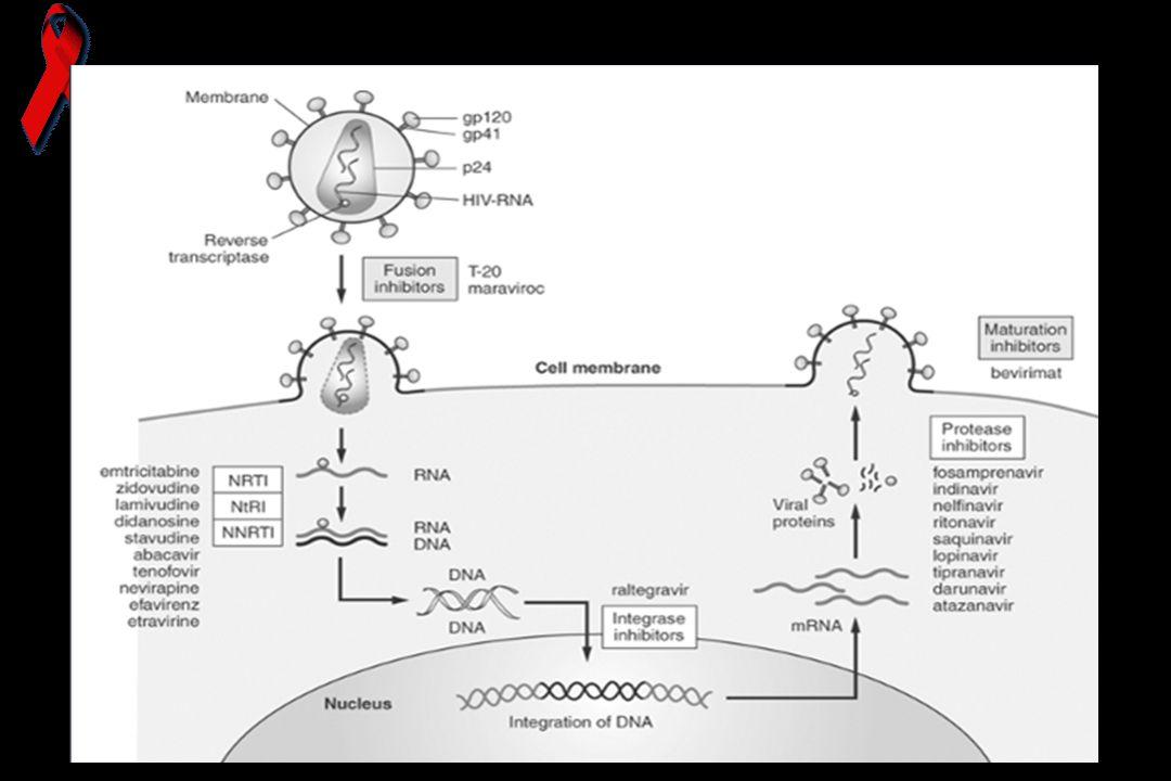 Maraviroc-Kemokin reseptör antagonisti