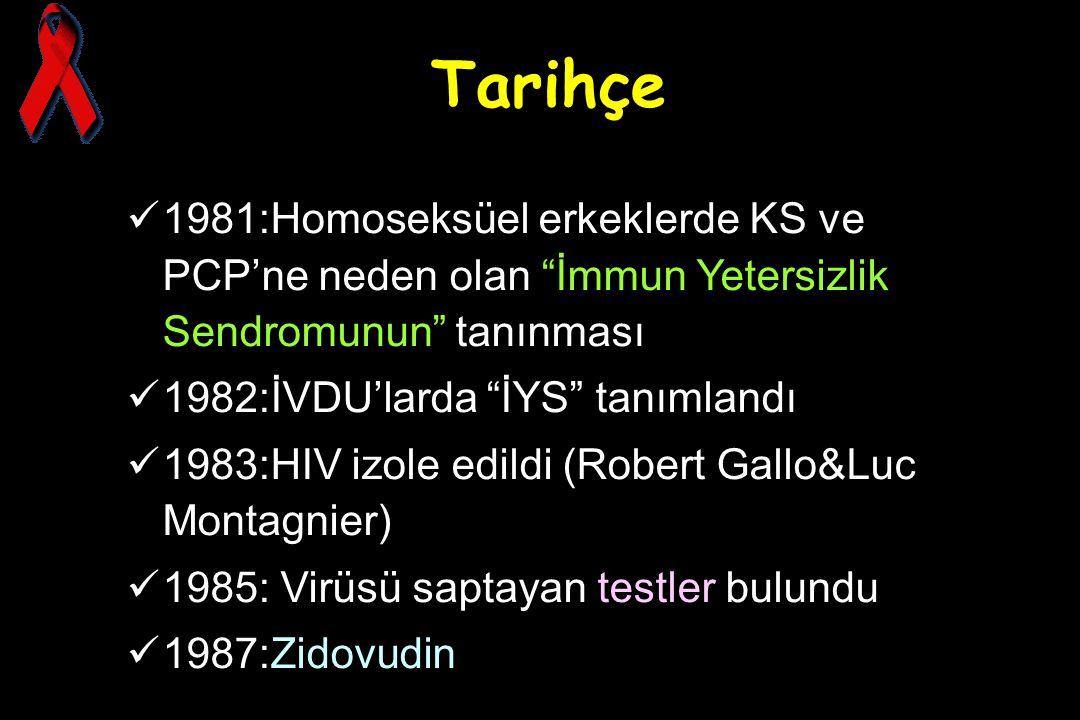 Tarihçe 1981:Homoseksüel erkeklerde KS ve PCP'ne neden olan İmmun Yetersizlik Sendromunun tanınması.