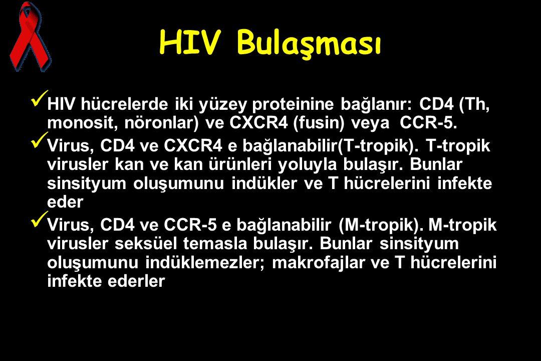 HIV Bulaşması HIV hücrelerde iki yüzey proteinine bağlanır: CD4 (Th, monosit, nöronlar) ve CXCR4 (fusin) veya CCR-5.