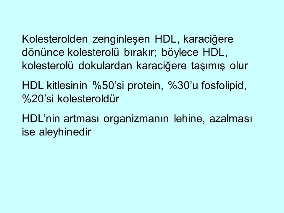 Kolesterolden zenginleşen HDL, karaciğere dönünce kolesterolü bırakır; böylece HDL, kolesterolü dokulardan karaciğere taşımış olur