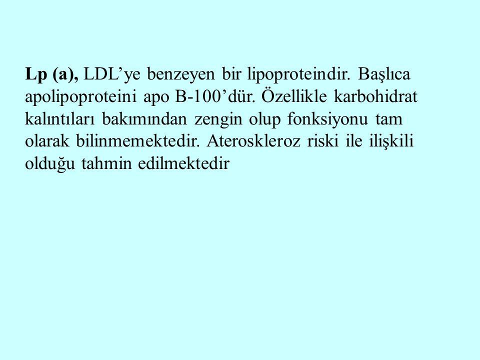 Lp (a), LDL'ye benzeyen bir lipoproteindir