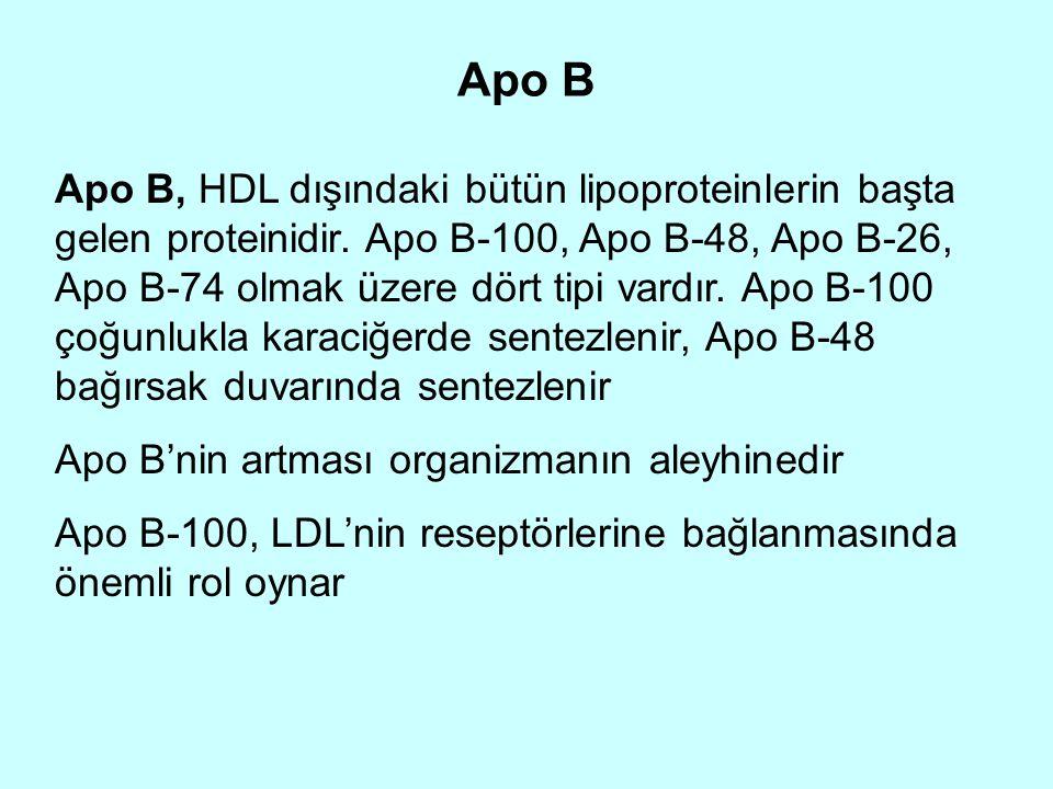 Apo B