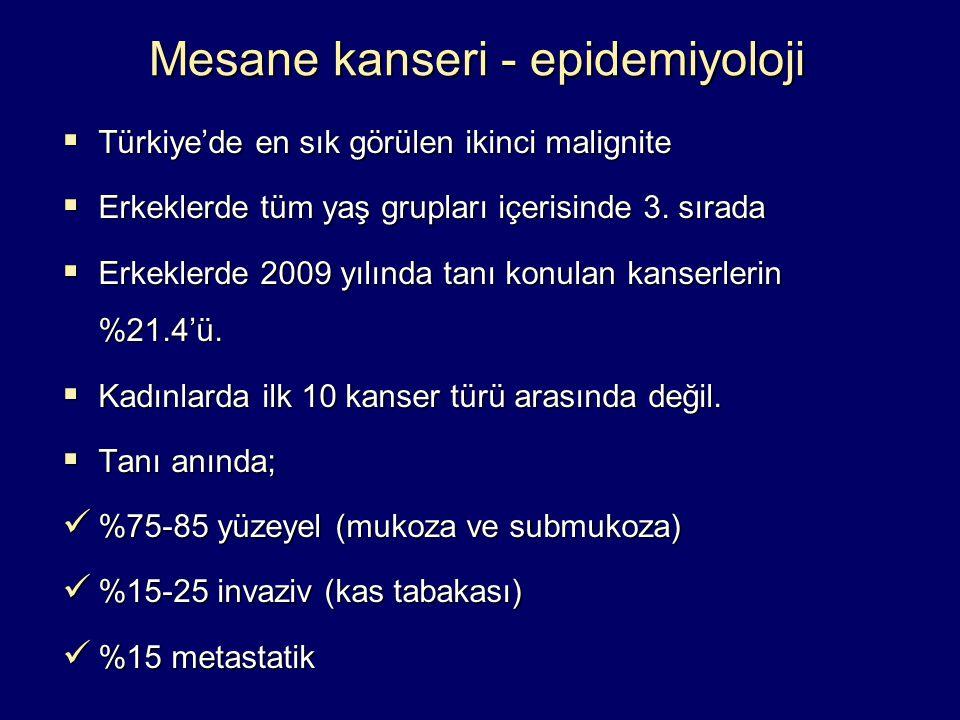 Mesane kanseri - epidemiyoloji