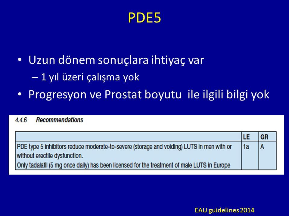 PDE5 Uzun dönem sonuçlara ihtiyaç var