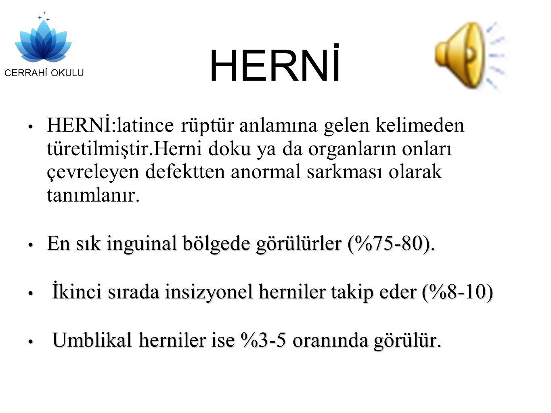 HERNİ