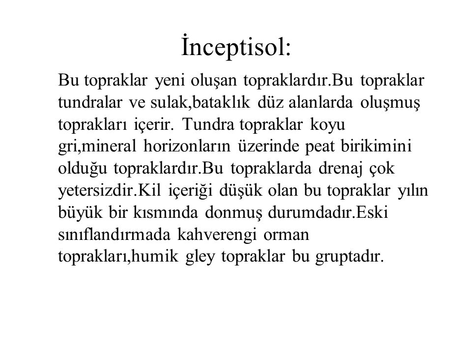 İnceptisol: