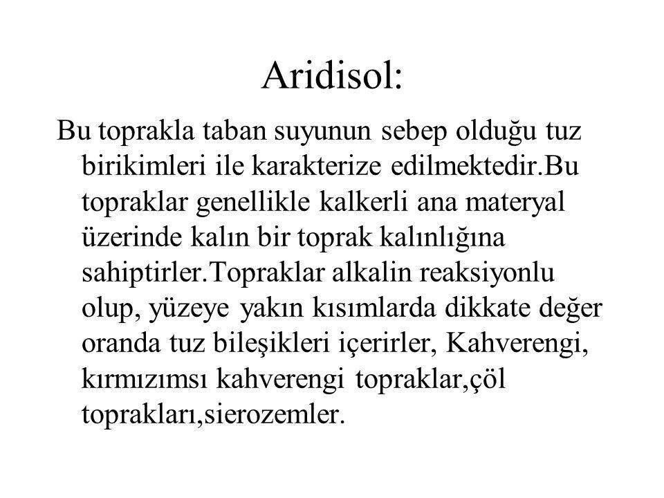 Aridisol: