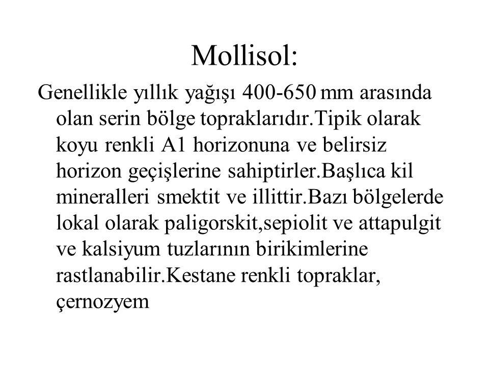 Mollisol: