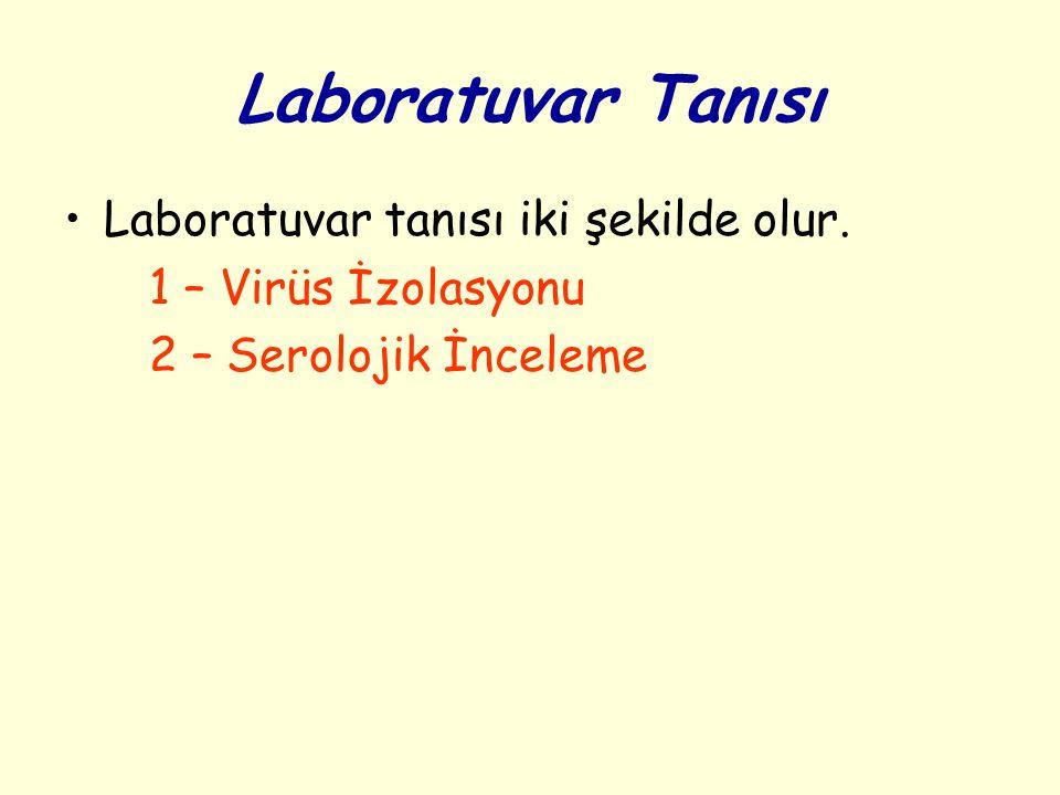 Laboratuvar Tanısı Laboratuvar tanısı iki şekilde olur.