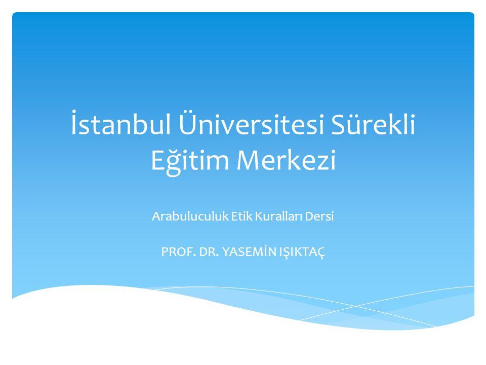 İstanbul Üniversitesi Sürekli Eğitim Merkezi