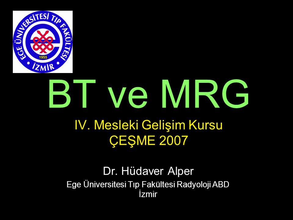 BT ve MRG IV. Mesleki Gelişim Kursu ÇEŞME 2007