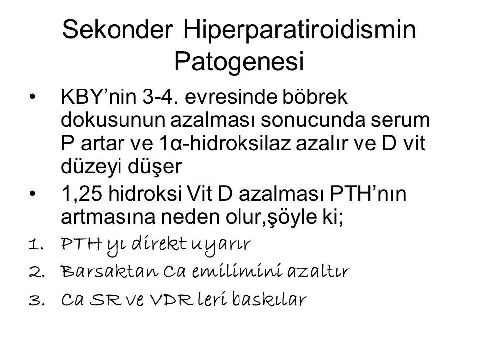 Sekonder Hiperparatiroidismin Patogenesi