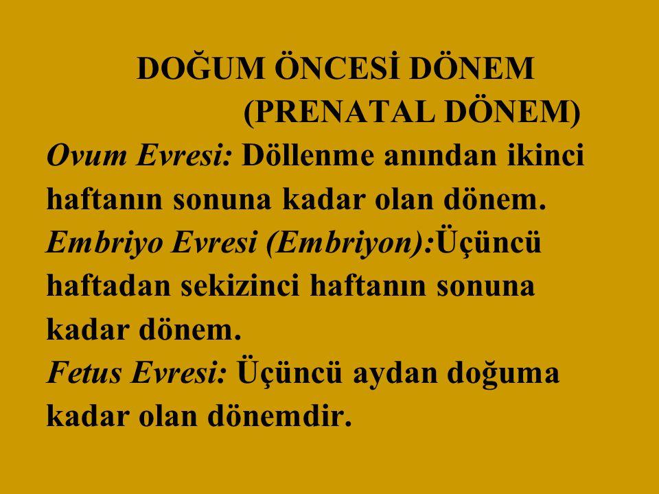 DOĞUM ÖNCESİ DÖNEM (PRENATAL DÖNEM) Ovum Evresi: Döllenme anından ikinci haftanın sonuna kadar olan dönem.
