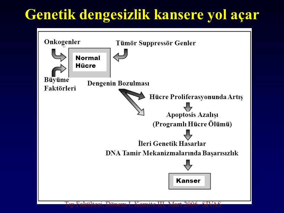 Genetik dengesizlik kansere yol açar