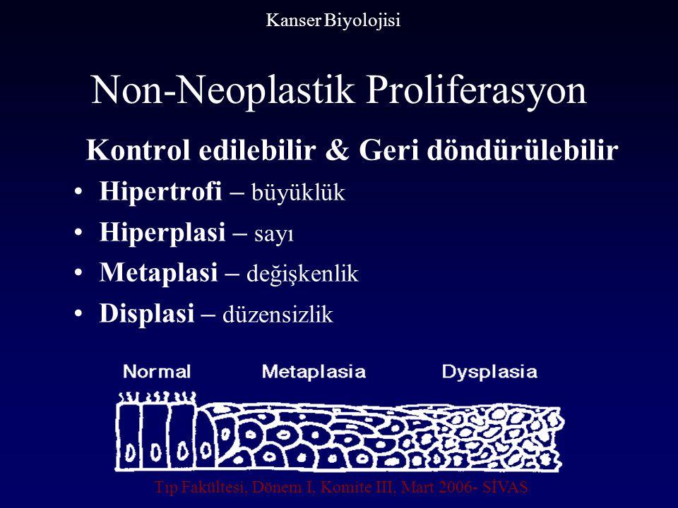 Non-Neoplastik Proliferasyon
