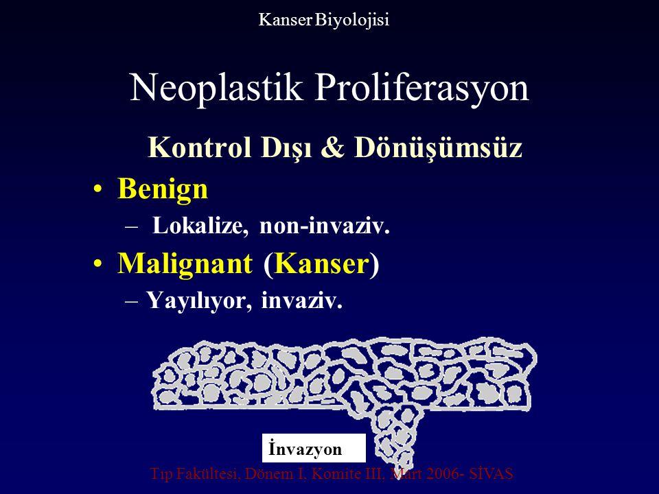 Neoplastik Proliferasyon