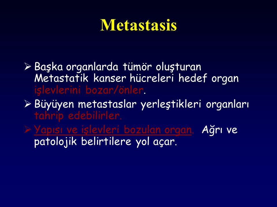 Metastasis Başka organlarda tümör oluşturan Metastatik kanser hücreleri hedef organ işlevlerini bozar/önler.