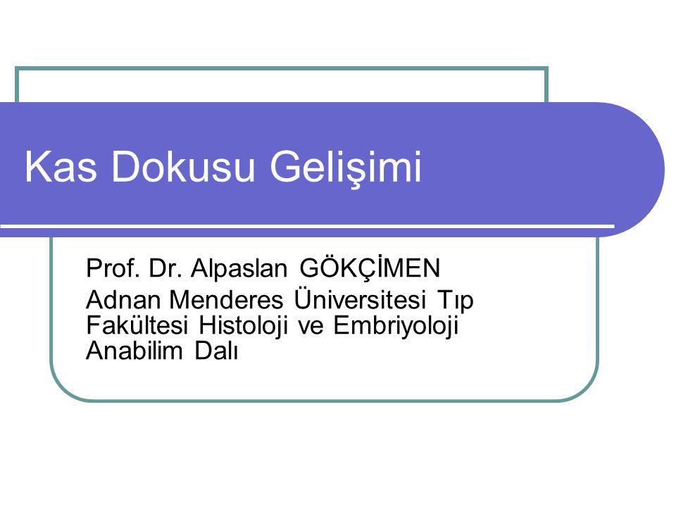 Kas Dokusu Gelişimi Prof. Dr. Alpaslan GÖKÇİMEN