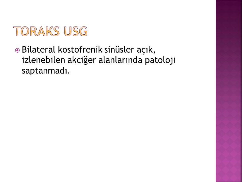 Toraks USG Bilateral kostofrenik sinüsler açık, izlenebilen akciğer alanlarında patoloji saptanmadı.