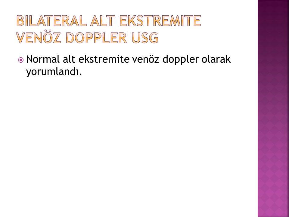 Bilateral Alt Ekstremite Venöz Doppler USG