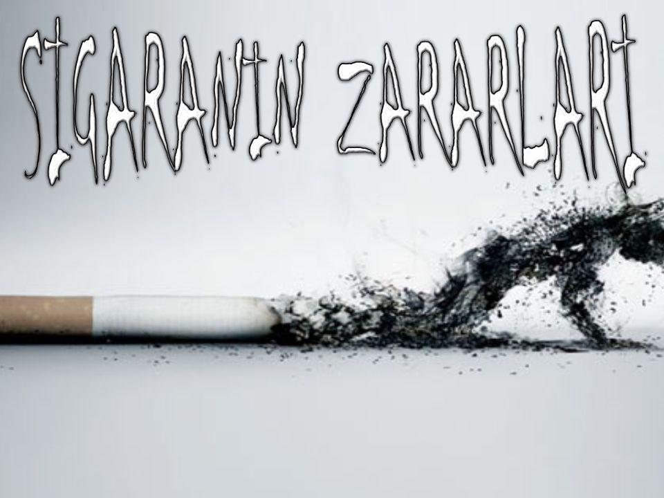SIGARANIN ZARARLARI