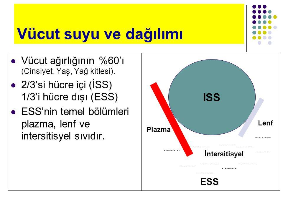 Vücut suyu ve dağılımı ISS