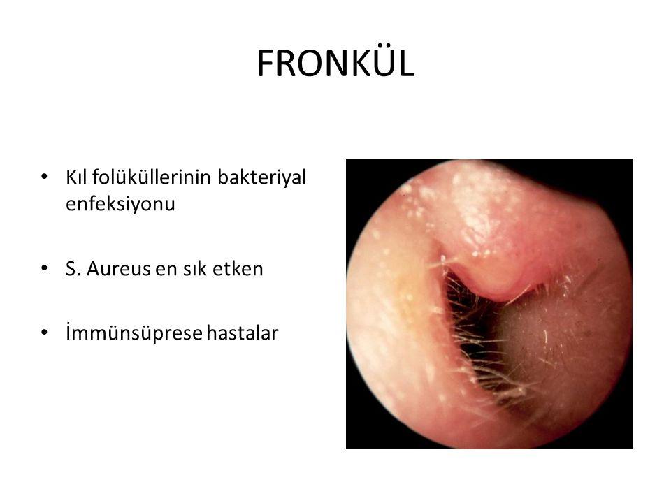 FRONKÜL Kıl folüküllerinin bakteriyal enfeksiyonu