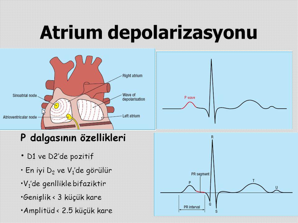 Atrium depolarizasyonu