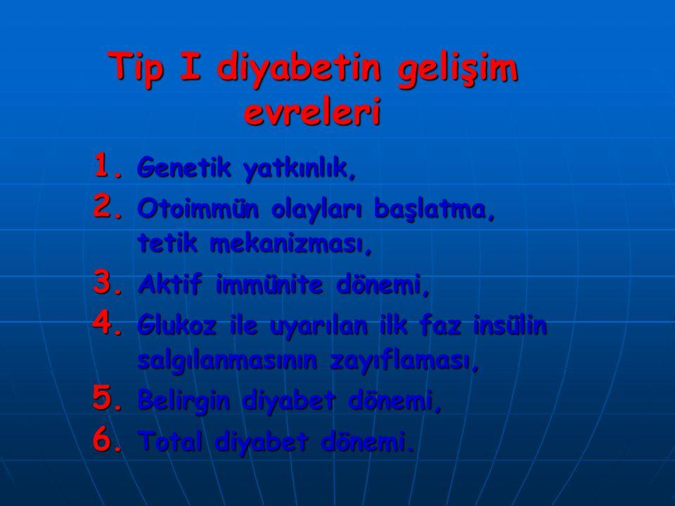 Tip I diyabetin gelişim evreleri