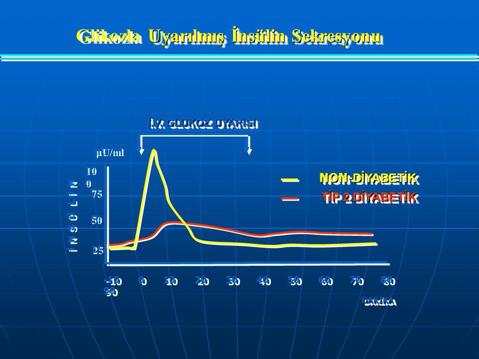 Glikozla Uyarılmış İnsülin Sekresyonu