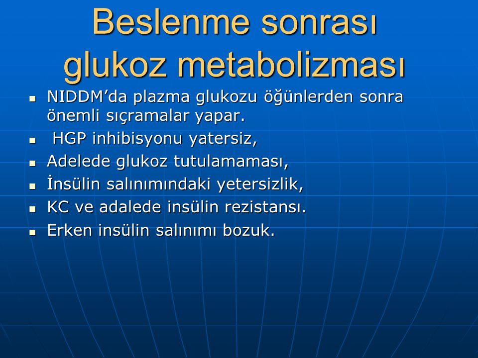 Beslenme sonrası glukoz metabolizması