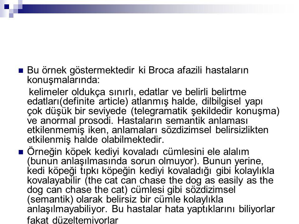 Bu örnek göstermektedir ki Broca afazili hastaların konuşmalarında: