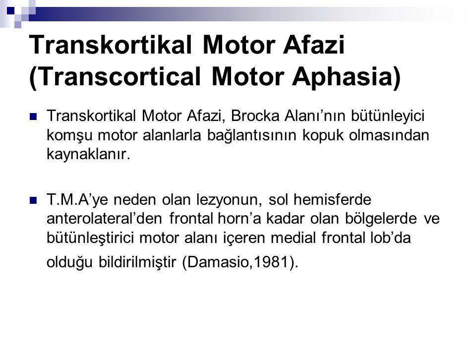 Transkortikal Motor Afazi (Transcortical Motor Aphasia)