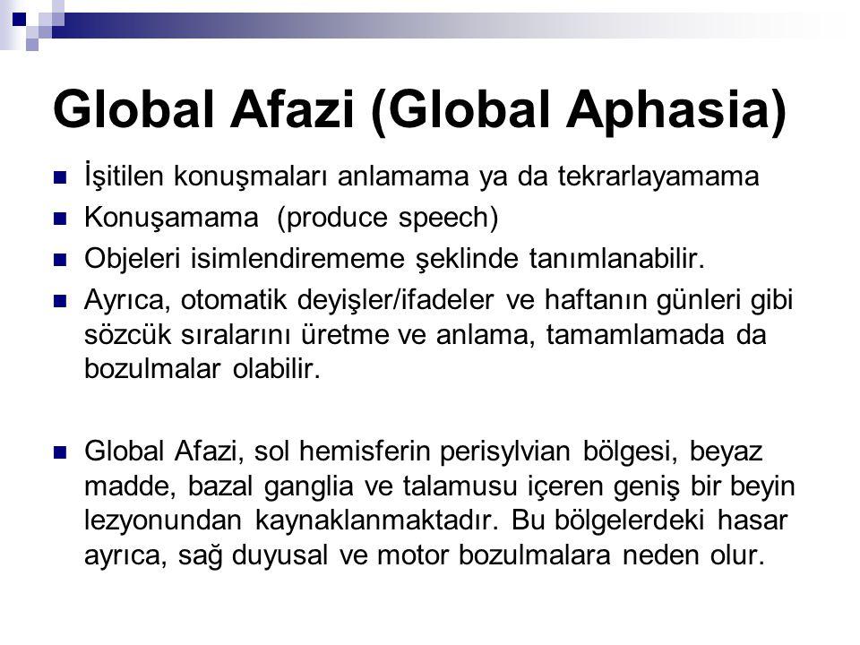 Global Afazi (Global Aphasia)