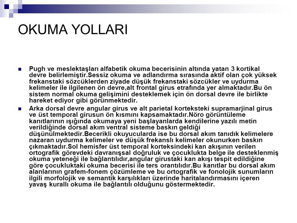 OKUMA YOLLARI