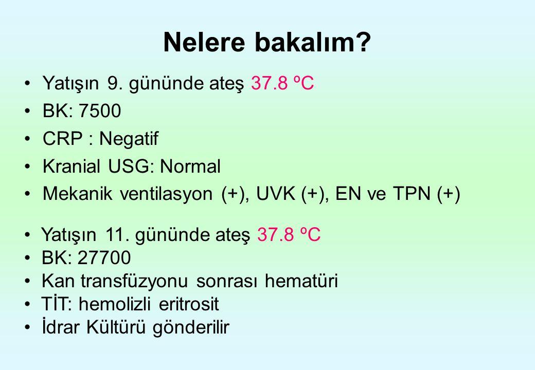 Nelere bakalım Yatışın 9. gününde ateş 37.8 ºC BK: 7500 CRP : Negatif