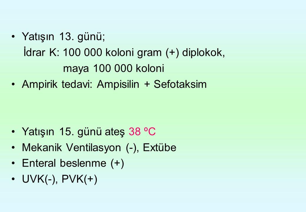 Yatışın 13. günü; İdrar K: 100 000 koloni gram (+) diplokok, maya 100 000 koloni. Ampirik tedavi: Ampisilin + Sefotaksim.