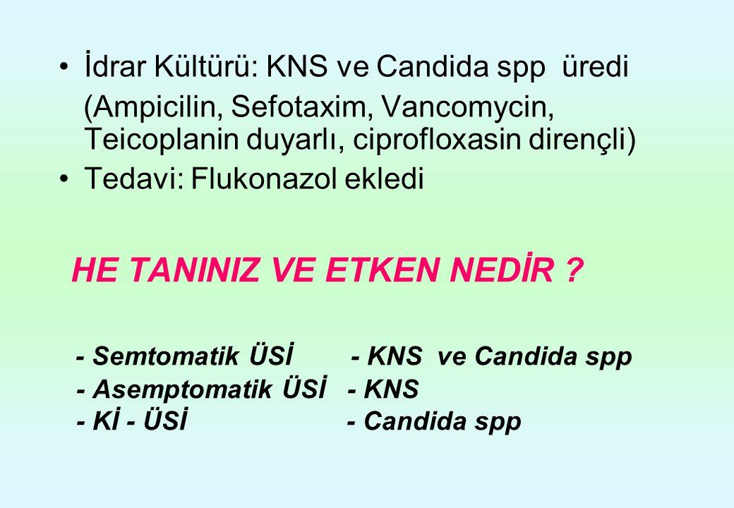 İdrar Kültürü: KNS ve Candida spp üredi