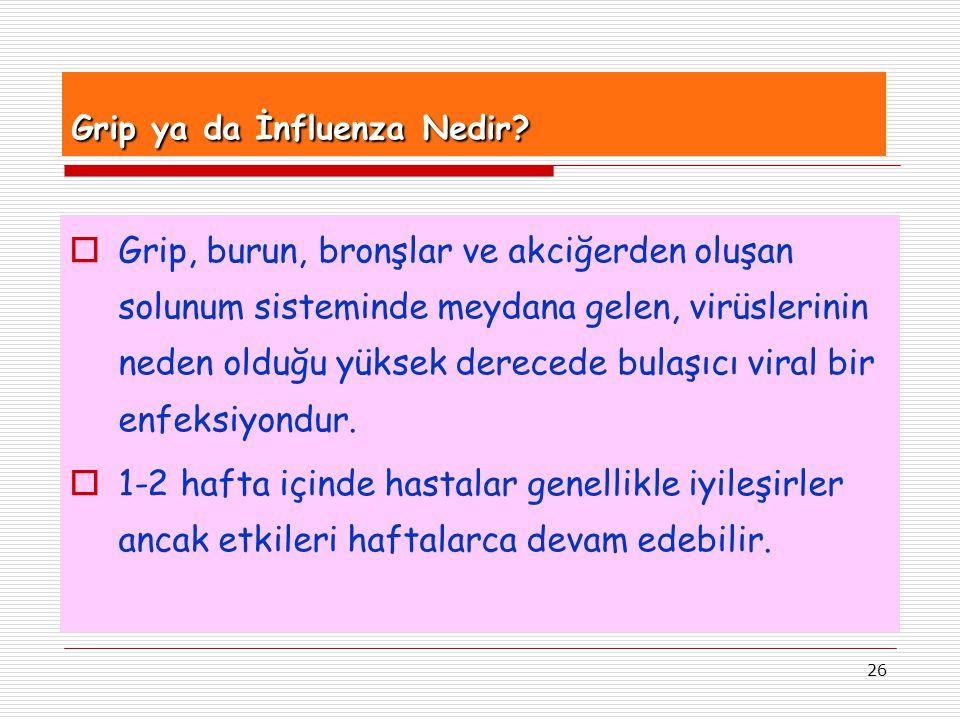 Grip ya da İnfluenza Nedir